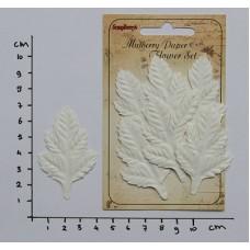 Papieren bladeren Cedar white