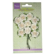 Papieren bloemen Witte anjers