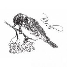 Clearstamp Birds